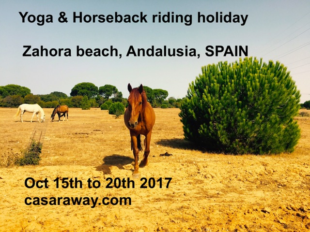 YOGA HORSE BACK RIDING RETREAT SPAIN