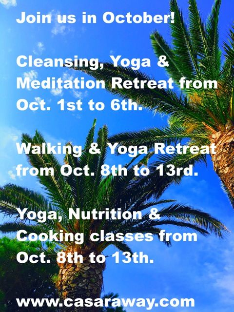 YOGA RETREATS SPAIN